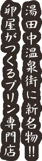 湯田中温泉街に新名物!!卵屋がつくるプリン専門店